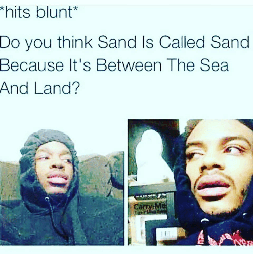 Memes, 🤖, and Think: hits blunt*  Do you think Sand Is Called Sand  Because It's Between The Sea  And Land?