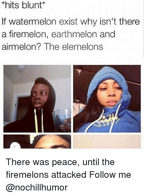 The Elemelons: *hits blunt  f watermelon exist why isn't there  a firemelon, earthmelon and  airmelon  The elemelons There was peace, until the firemelons attacked Follow me @nochillhumor