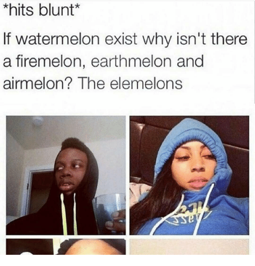 The Elemelons: *hits blunt  If watermelon exist why isn't there  a firemelon, earthmelon and  airmelon? The elemelons
