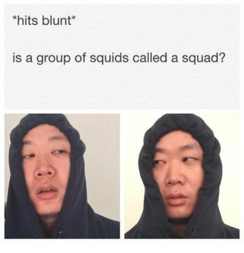 hits blunt: hits blunt*  is a group of squids called a squad?