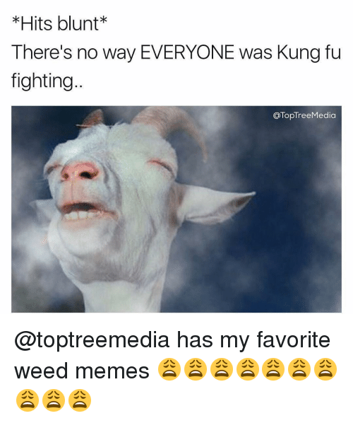 Weed Memes: Hits blunt  There's no way EVERYONE was Kung fu  fighting  TopTreeMedia @toptreemedia has my favorite weed memes 😩😩😩😩😩😩😩😩😩😩
