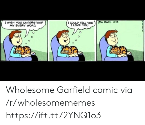 I Love You: HM DAVS 10-15  I WISH VOU UNDERSTOOD  MY EVERY WORD  I COULD TELL You  I LOVE YOU  PASIC Wholesome Garfield comic via /r/wholesomememes https://ift.tt/2YNQ1o3