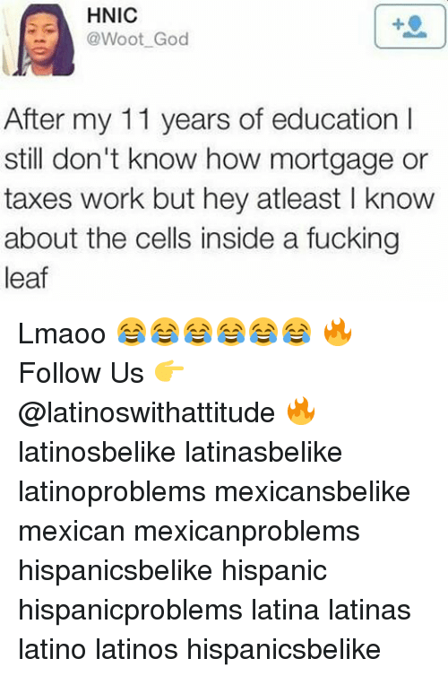wootly: HNIC  @Woot God  After my 11 years of education I  still don't know how mortgage or  taxes work but hey atleast l know  about the cells inside a fucking  leaf Lmaoo 😂😂😂😂😂😂 🔥 Follow Us 👉 @latinoswithattitude 🔥 latinosbelike latinasbelike latinoproblems mexicansbelike mexican mexicanproblems hispanicsbelike hispanic hispanicproblems latina latinas latino latinos hispanicsbelike