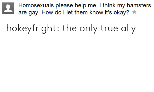 Ally: hokeyfright: the only true ally
