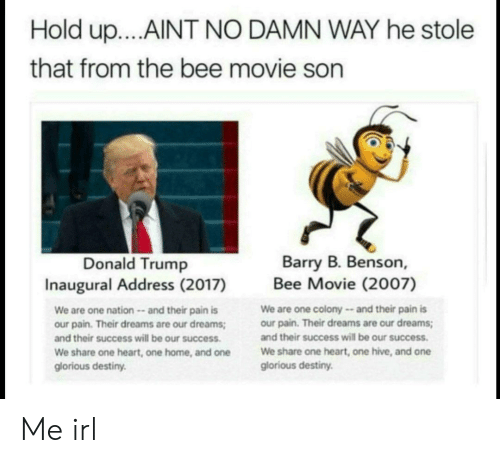 Bee Movie, Destiny, and Donald Trump: Hold up....AINT NO DAMN WAY he stole  that from the bee movie son  Donald Trump  Inaugural Address (2017)  Barry B. Benson,  Bee Movie (2007)  We are one nation and their pain is  our pain. Their dreams are our dreams  and their success will be our success  We share one heart, one home, and one  glorious destiny  We are one colony and their pain is  our pain. Their dreams are our dreams;  and their success will be our success  We share one heart, one hive, and one  glorious destiny. Me irl