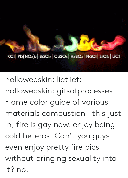 Fire, Tumblr, and Blog: hollowedskin: lietliet:  hollowedskin:   gifsofprocesses: Flame color guide of various materials combustion   this just in, fire is gay now. enjoy being cold heteros.   Can't you guys even enjoy pretty fire pics without bringing sexuality into it?  no.