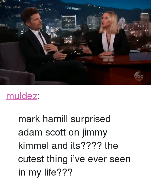 "Adam Scott: HOLLYWOO <p><a href=""http://muldez.tumblr.com/post/160326250577/mark-hamill-surprised-adam-scott-on-jimmy-kimmel"" class=""tumblr_blog"">muldez</a>:</p><blockquote><p>mark hamill surprised adam scott on jimmy kimmel and its???? the cutest thing i've ever seen in my life???</p></blockquote>"