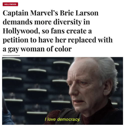 Love Democracy: HOLLYWOOD  Captain Marvel's Brie Larson  demands more diversity in  Hollywood, so fans create a  petition to have her replaced with  gay womanof color  а  T love democracy