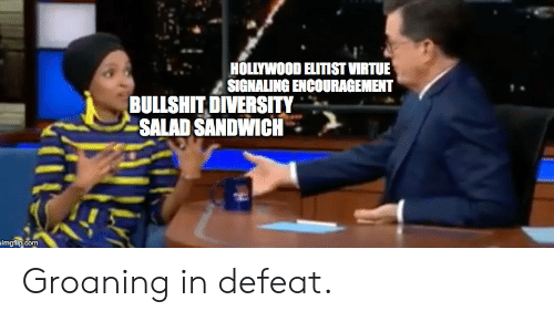 Bullshit, Diversity, and Com: HOLLYWOOD ELITIST VIRTUE  SIGNALING ENCOURAGEMENT  BULLSHIT DIVERSITY  -SALAD SANDWICH .  p.com Groaning in defeat.
