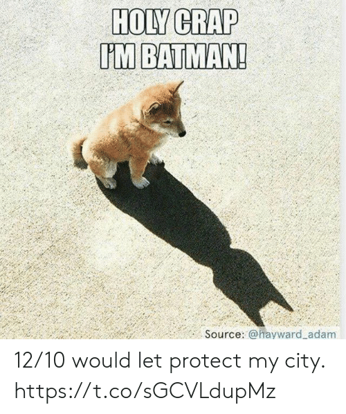 Batman, Funny, and Source: HOLY CRAP  UM BATMAN!  .. Source: @ ayward.adam 12/10 would let protect my city. https://t.co/sGCVLdupMz