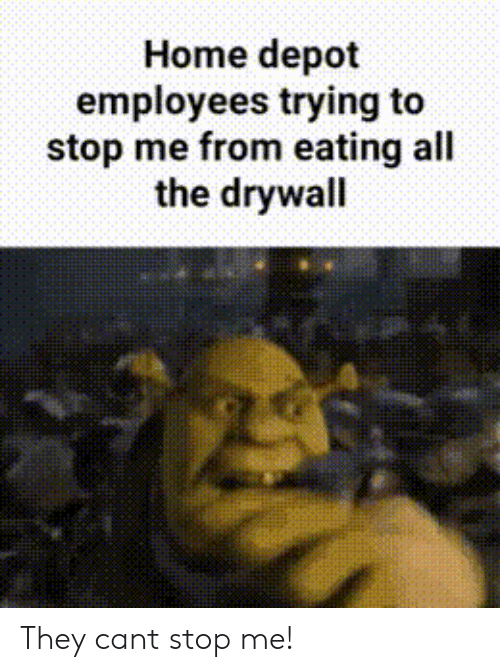 Depot: Home depot  employees trying to  stop me from eating all  the drywall They cant stop me!