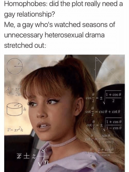 Cinn: Homophobes: did the plot really need a  gay relationship?  Me, a gay who's watched seasons of  unnecessary heterosexual drama  stretched out:  1 + cos θ  1 + cos 0  1-cos θ  cin'n
