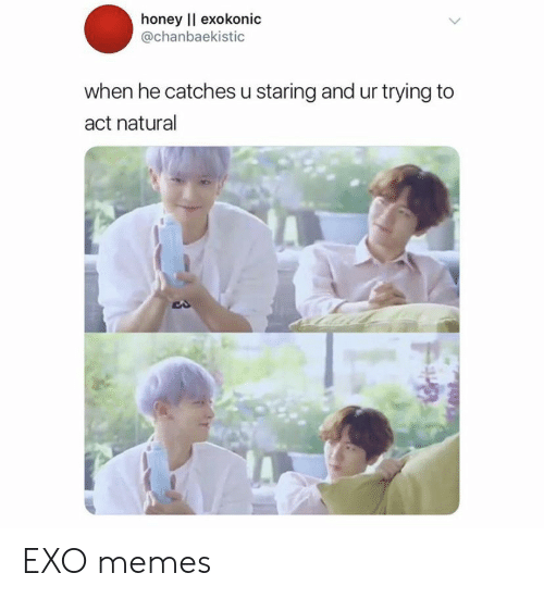 Memes, Exo, and Act: honey l exokonic  @chanbaekistic  when he catches u staring and ur trying to  act natural EXO memes