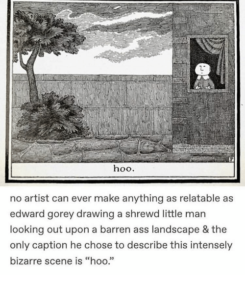 "Bizarre: hoo.  no artist can ever make anything as relatable as  edward gorey drawing a shrewd little man  looking out upon a barren ass landscape & the  only caption he chose to describe this intensely  bizarre scene is ""hoo.""  05"