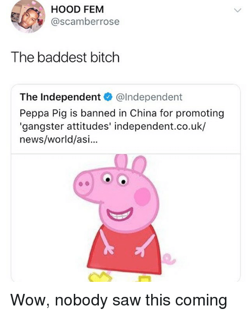 Bitch, Memes, and News: HOOD FEM  @scamberrose  The baddest bitch  The Independent@Independent  Peppa Pig is banned in China for promoting  'gangster attitudes' independent.co.uk/  news/world/asi... Wow, nobody saw this coming