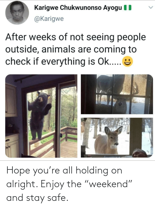 """Enjoy The: Hope you're all holding on alright. Enjoy the """"weekend"""" and stay safe."""
