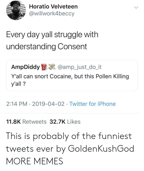 snort: Horatio Velveteen  @willwork4beccy  Every day yall struggle with  understanding Consent  AmpDiddy  @amp_just_do_it  Y'all can snort Cocaine, but this Pollen Killing  y'all?  2:14 PM 2019-04-02 Twitter for iPhone  11.8K Retweets 32.7K Likes This is probably of the funniest tweets ever by GoldenKushGod MORE MEMES