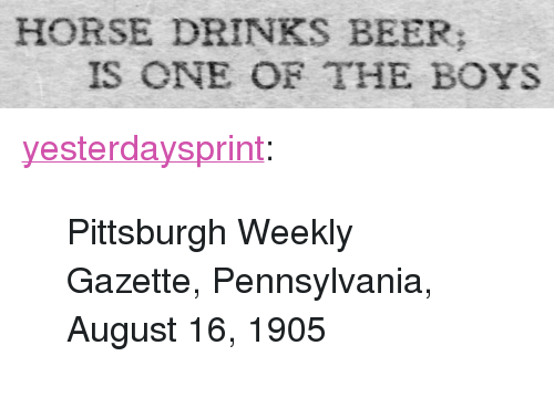 "Gazette: HORSE DRINKS BEER  IS ONE OF THE BOYS <p><a href=""http://yesterdays-print.com/post/159617674869/pittsburgh-weekly-gazette-pennsylvania-august"" class=""tumblr_blog"">yesterdaysprint</a>:</p><blockquote><p> Pittsburgh Weekly Gazette, Pennsylvania, August 16, 1905<br/></p></blockquote>"