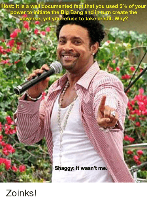 shaggy it wasnt me: Host:It is a well documented fact that you used 5% of your  power to initiate the Big Bang and in turn create the  universe, yet you refuse to take credit. Why?  Shaggy: It wasn't me.