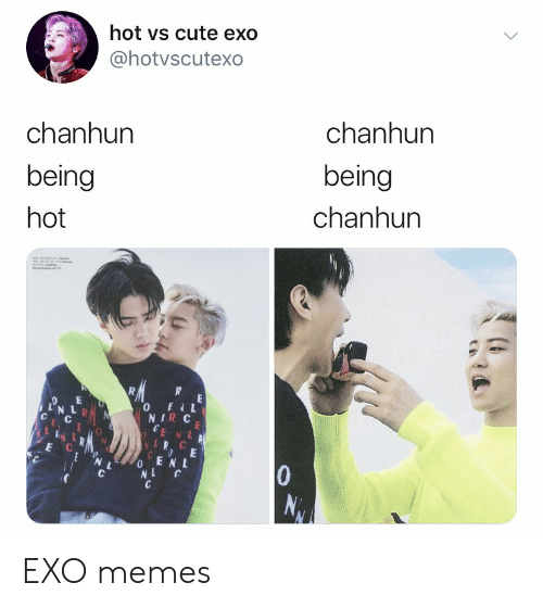 Cute, Memes, and Exo: hot vs cute exo  @hotvscutexo  chanhun  chanhun  being  being  chanhun  hot  wwv  R  0E  N L  NIR C  CE NL  LR C  COE  0ENL  NL  E C  10  NAV EXO memes