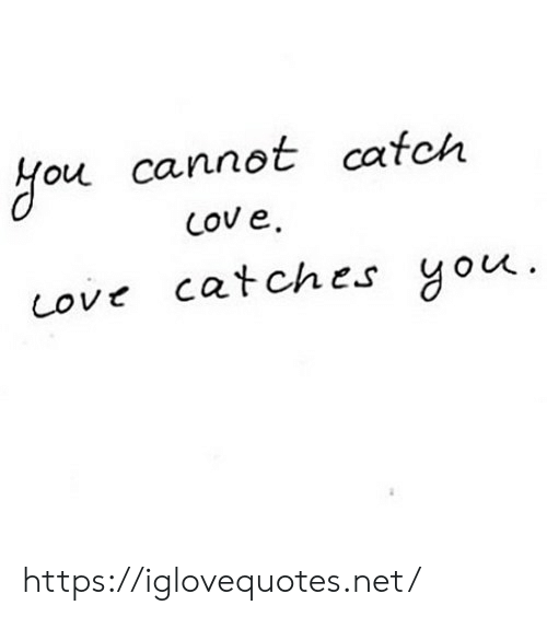 Net, You, and Href: Hou cannot catch  Cov e  cove catches you  . https://iglovequotes.net/