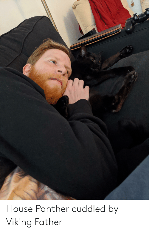 panther: House Panther cuddled by Viking Father