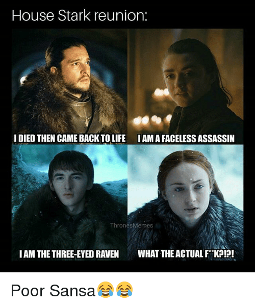 What The Actual F: House Stark reunion:  IDIED THEN CAME BACKTOLIFE IAM A FACELESS ASSASSIN  ThronesMemes  IAM THE THREE-EYED RAVEN WHAT THE ACTUAL F KPI?! Poor Sansa😂😂