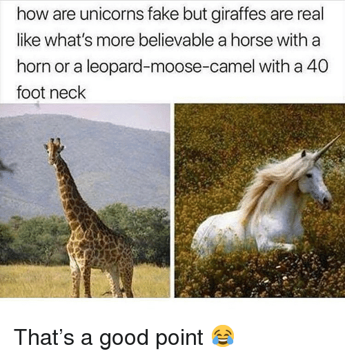 Believable: how are unicorns fake but giraffes are real  like what's more believable a horse with a  horn or a leopard-moose-camel with a 40  foot neck That's a good point 😂