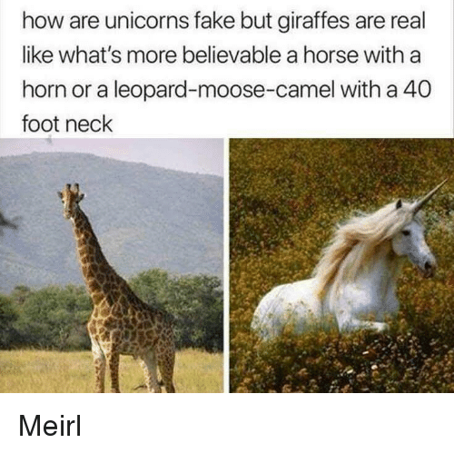Believable: how are unicorns fake but giraffes are real  like what's more believable a horse with a  horn or a leopard-moose-camel with a 40  foot neck Meirl