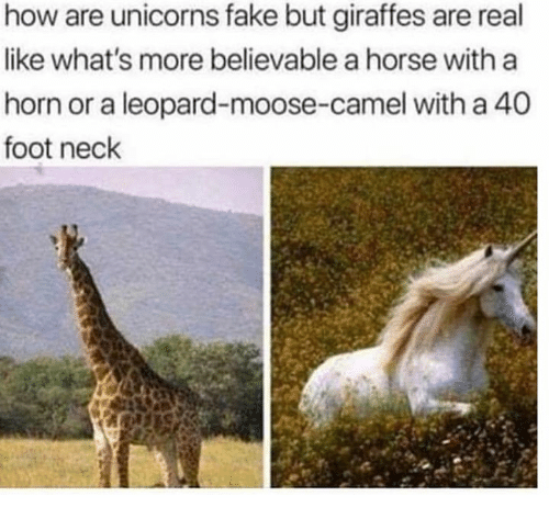 Fake, Horse, and Believable: how are unicorns fake but giraffes are real  like what's more believable a horse with a  horn or a leopard-moose-camel with a 40  foot neck