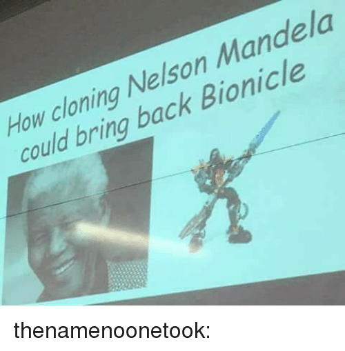 Bailey Jay, Gif, and Nelson Mandela: How cloning Nelson Mandela  could bring back Bionicle thenamenoonetook: