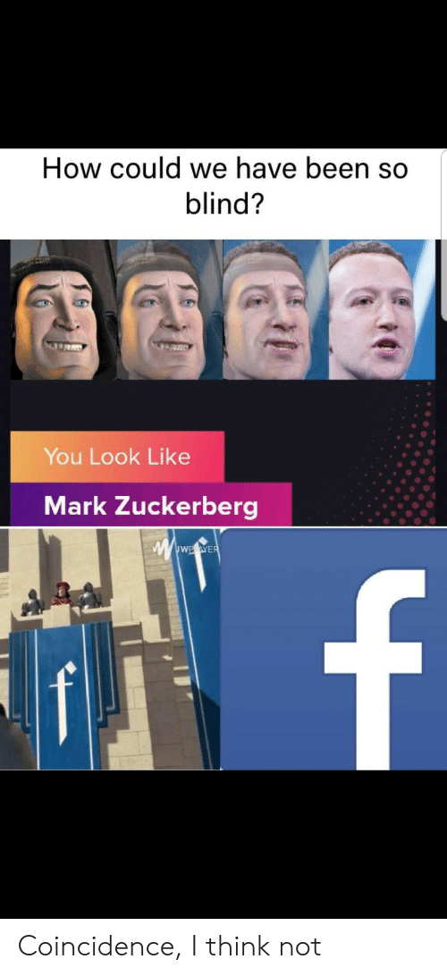zuckerberg: How could we have been so  blind?  You Look Like  Mark Zuckerberg  wwwE.eWER  f Coincidence, I think not