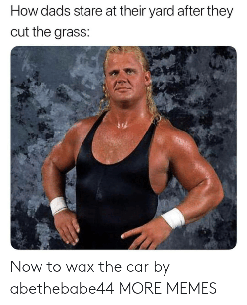 wax: How dads stare at their yard after they  cut the grass: Now to wax the car by abethebabe44 MORE MEMES