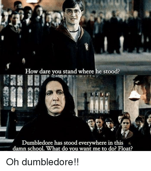 Dumbledore, Funny, and School: How dare you stand where he stood?  e on  a n m alfoy  Dumbledore has stood everywhere in this  damn school. What do you want me to do? Float? Oh dumbledore!!