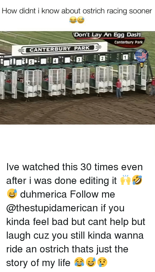 the story of my life: How didnt i know about ostrich racing sooner  Don't Lay An Egg Dash  Canterbury Park  CANTERBURY PARK Ive watched this 30 times even after i was done editing it 🙌🤣😅 duhmerica Follow me @thestupidamerican if you kinda feel bad but cant help but laugh cuz you still kinda wanna ride an ostrich thats just the story of my life 😂😅😢