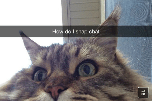snap chat: How do I snap chat
