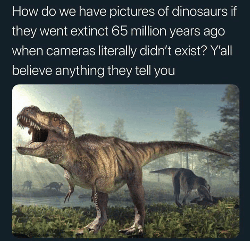 Memes, Dinosaurs, and Pictures: How do we have pictures of dinosaurs if  they went extinct 65 million years ago  when cameras literally didn't exist? Yall  believe anything they tell you
