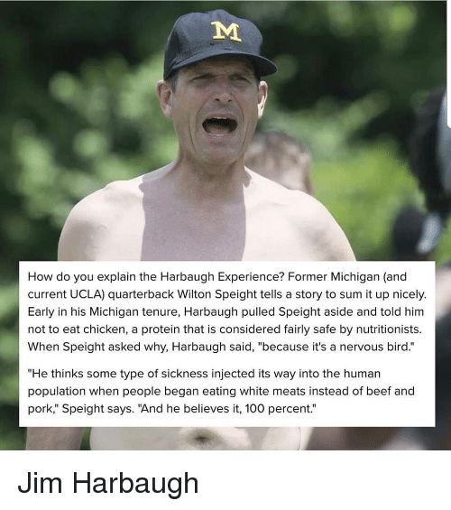 """Jim Harbaugh: How do you explain the Harbaugh Experience? Former Michigan (and  current UCLA) quarterback Wilton Speight tells a story to sum it up nicely.  Early in his Michigan tenure, Harbaugh pulled Speight aside and told him  not to eat chicken, a protein that is considered fairly safe by nutritionists.  When Speight asked why, Harbaugh said, """"because it's a nervous bird.""""  """"He thinks some type of sickness injected its way into the human  population when people began eating white meats instead of beef and  pork"""" Speight says. """"And he believes it, 100 percent."""" Jim Harbaugh"""