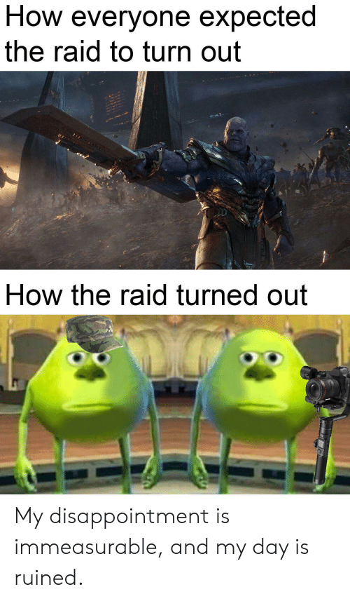 How, Raid, and The Raid: How everyone expected  the raid to turn out  How the raid turned out My disappointment is immeasurable, and my day is ruined.