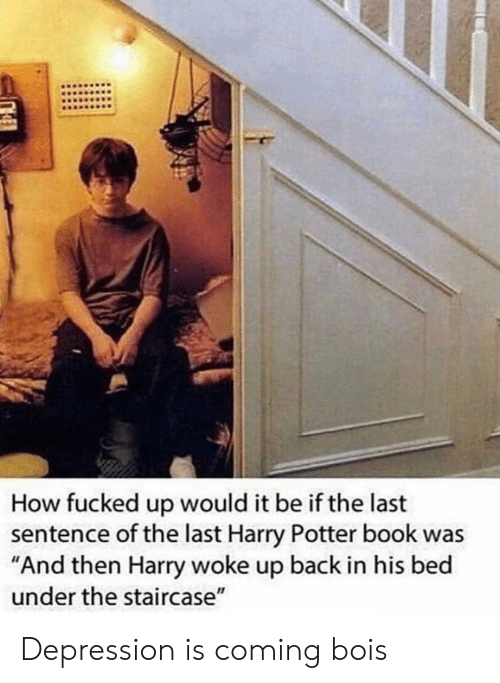 "Staircase: How fucked up would it be if the last  sentence of the last Harry Potter book was  ""And then Harry woke up back in his bed  under the staircase"" Depression is coming bois"