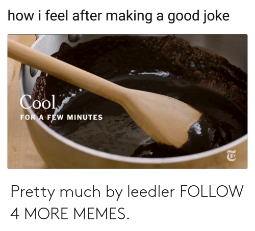 A Good Joke: how i feel after making a good joke  Cool  FOR A FEW MINUTES Pretty much by leedler FOLLOW 4 MORE MEMES.