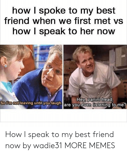 panini: how I spoke to my best  friend when we first met vs  how I speak to her now  SoUmnotleaving  until you  laugha  Hey, panini head,  are vou even listening to me How I speak to my best friend now by wadie31 MORE MEMES