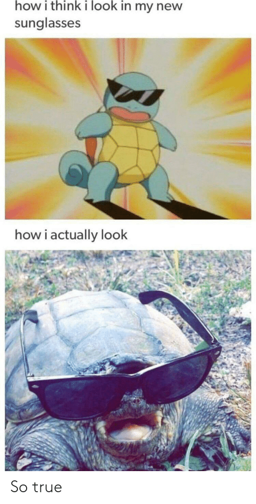 Sunglasses: how i think i look in my new  sunglasses  how i actually look So true