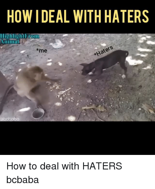 Memes, How To, and 🤖: HOW IDEAL WITH HATERS  *me How to deal with HATERS bcbaba