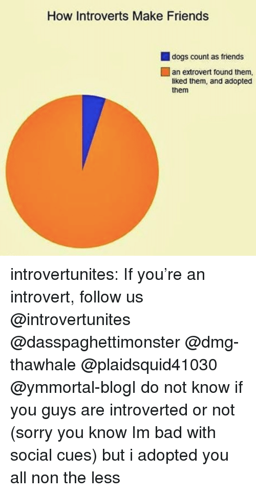 Bad, Dogs, and Friends: How Introverts Make Friends  dogs count as friends  an extrovert found them,  liked them, and adopted  them introvertunites:  If you're an introvert, follow us @introvertunites  @dasspaghettimonster @dmg-thawhale @plaidsquid41030 @ymmortal-blogI do not know if you guys are introverted or not (sorry you know Im bad with social cues) but i adopted you all non the less