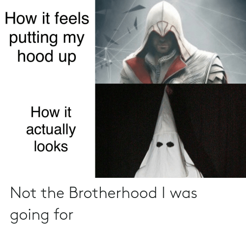 Reddit, Hood, and How: How it feels  putting my  hood up  How it  actually  looks Not the Brotherhood I was going for