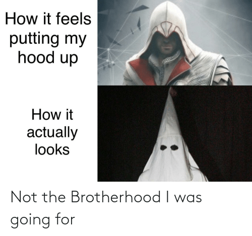 Hood: How it feels  putting my  hood up  How it  actually  looks Not the Brotherhood I was going for