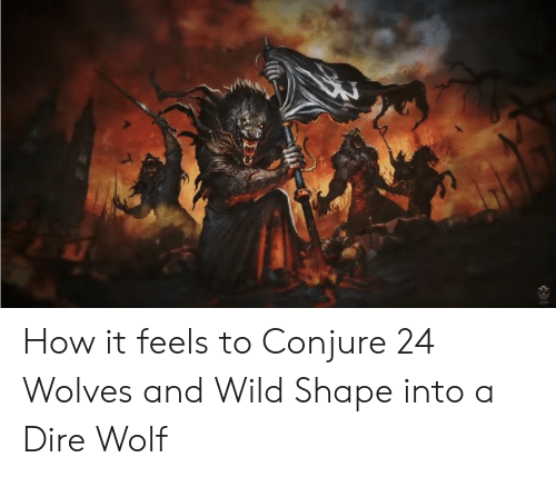 dire wolf: How it feels to Conjure 24 Wolves and Wild Shape into a Dire Wolf