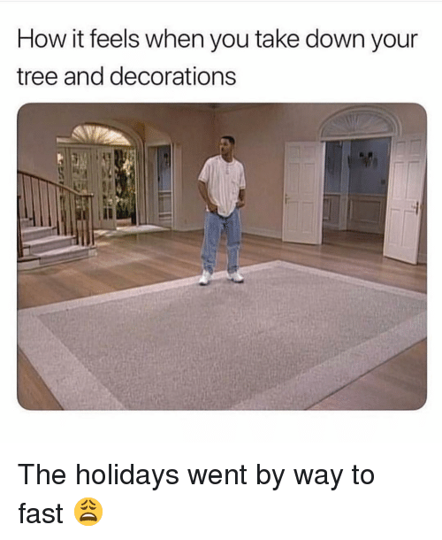 Memes, Tree, and 🤖: How it feels when you take down your  tree and decorations The holidays went by way to fast 😩