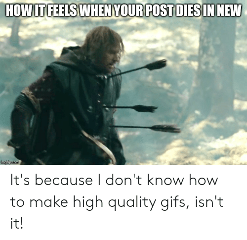 Gifs, How To, and Lord of the Rings: HOW IT FEELS WHEN YOUR POST DIES IN NEW  imgflip.com It's because I don't know how to make high quality gifs, isn't it!